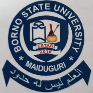 Borno State University Admission Form